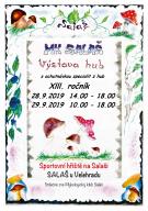 MK Salaš - Výstava hub s ochutnávkou specialit z hub